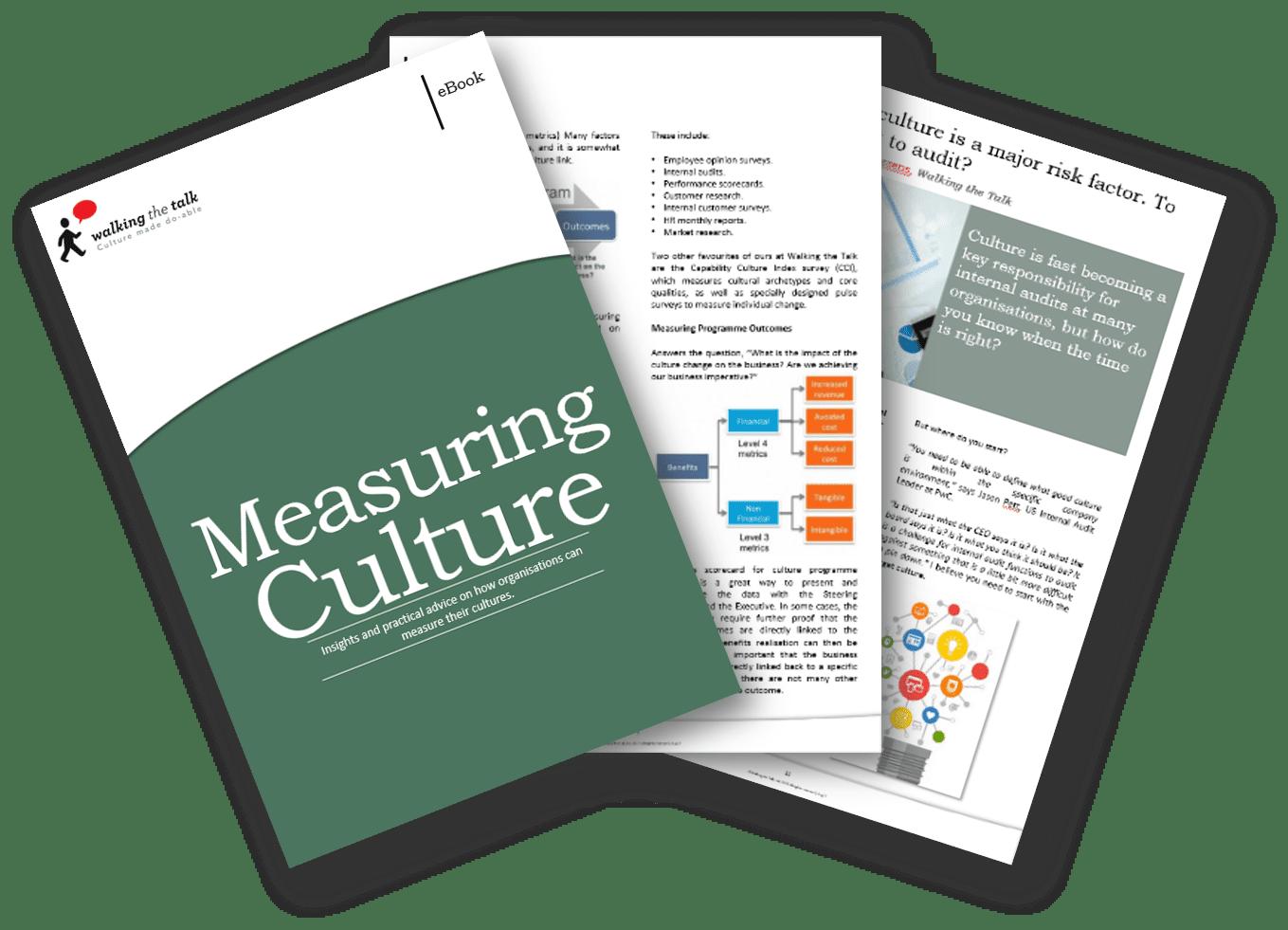 Measuring Culture Landing page.png