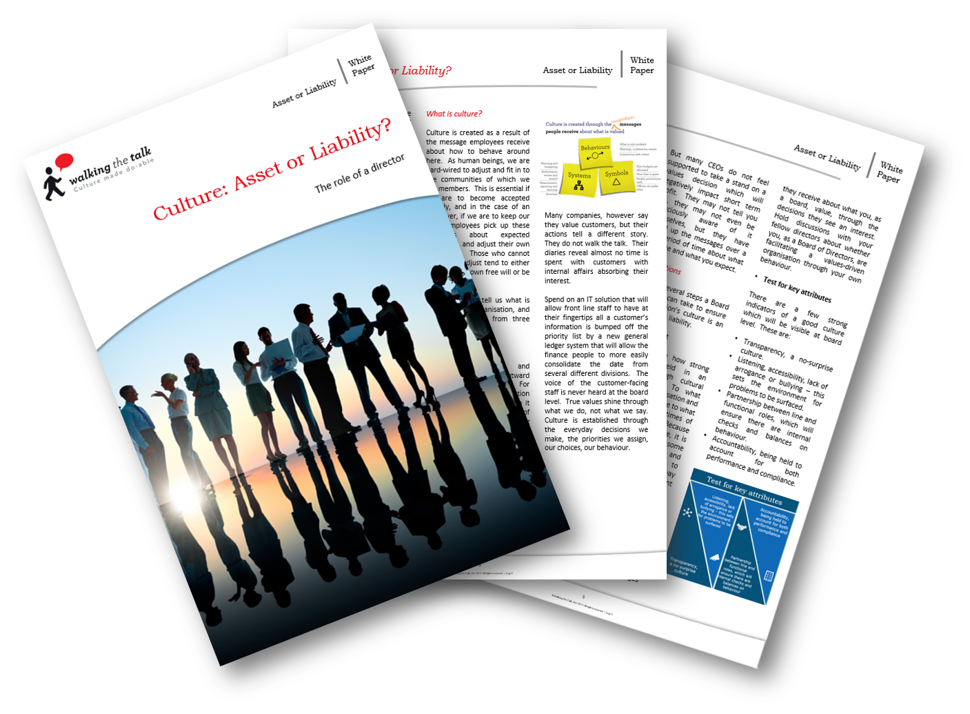 Download Culture: Asset or Liability? White Paper