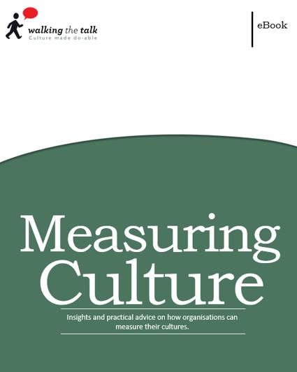 Measuring Culture ebook